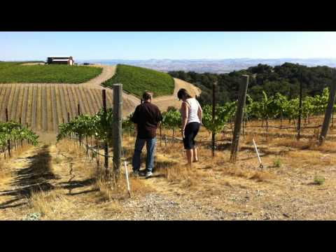Vineyard tour of Alta Colina