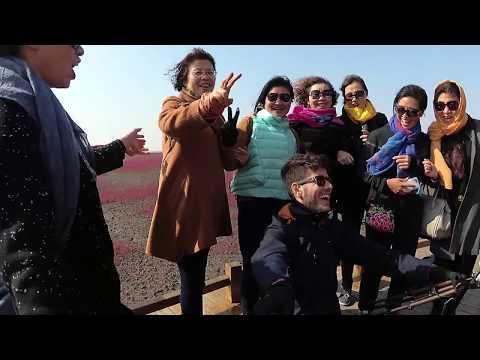 Panjin Honghaitan: Une journée aux plages rouges