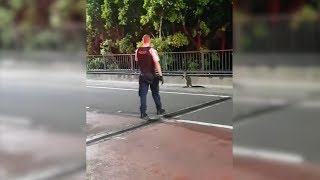 Police Engage In Car Chase with Wallaby On The Loose