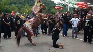 Download Video Kuda Renggong Menggetarkan Stadion Jalak Harupat Part1 MP3 3GP MP4