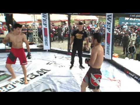 5 WEF81 PROFFIGHT34 Ашимбаев Алтын KG против Айдынбеков Айдар KG
