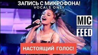 Голос с микрофона: Ariana Grande - No Tears Left To Cry (Голый голос)