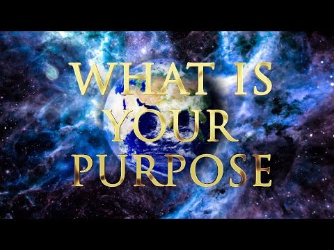 SCIENCE AND SPIRITUALITY OF PURPOSE AND FULFILLMENT IN LIFE #consciousness #enlighten #biocentrism