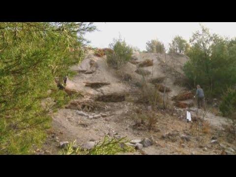 Ijams Nature Center transforms former quarry dump site