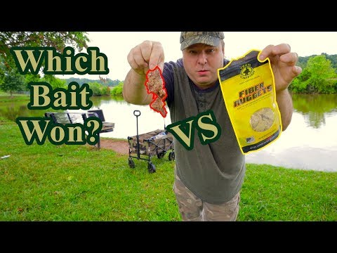 Fishing Bait Challenge: Chicken Liver Vs Fiber Nuggets