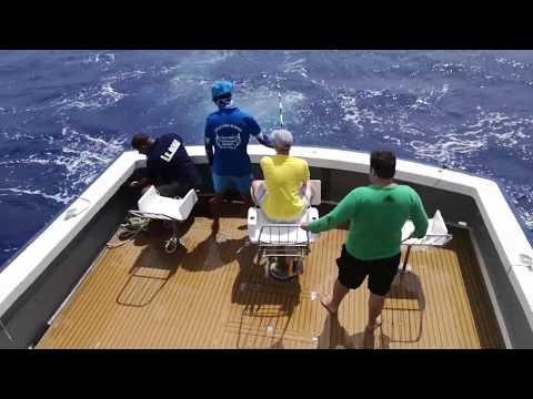 Mauritius Marlin Fishing