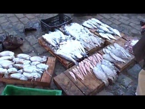 Algiers Fish Market