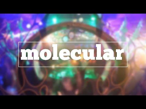 How do you spell molecular?