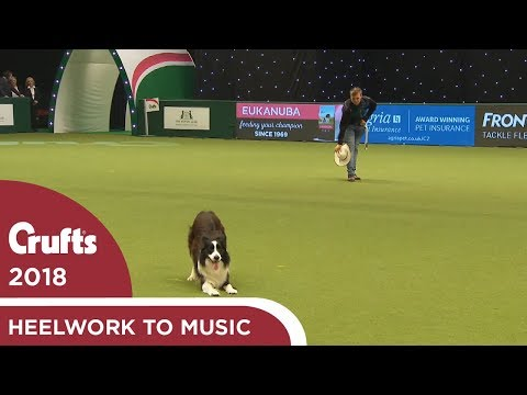 Heelwork to Music - Freestyle International Competition Part 1 | Crufts 2018
