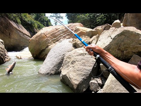 Adventure In The Forest | Fishing In A Heavy River | а Unique Way Of Catching Fish, Part 2