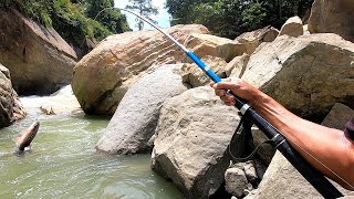 Adventure in the forest   Fishing in a heavy river   а Unique way of catching fish, Part 2