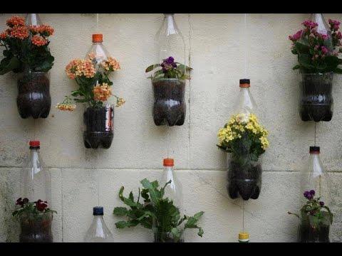 Balcony garden plant ideas
