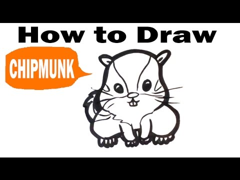 how to draw a chipmunk cute easy pictures to draw