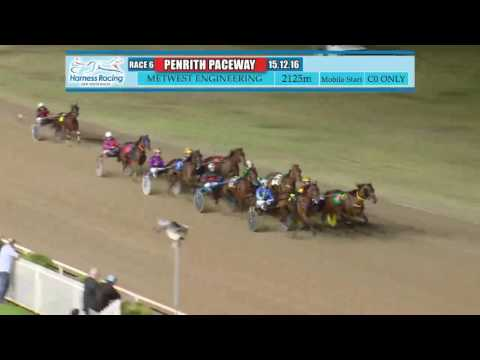 PENRITH - 15/12/2016 - Race 6 - FINE'S FINEST PACE