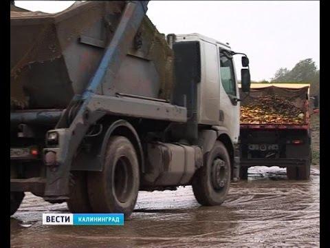 За вывоз мусора на закрытый полигон в Космодемьянском перевозчики могут лишиться лицензии