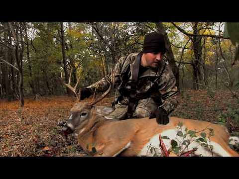 Maryland Whitetail Hunt