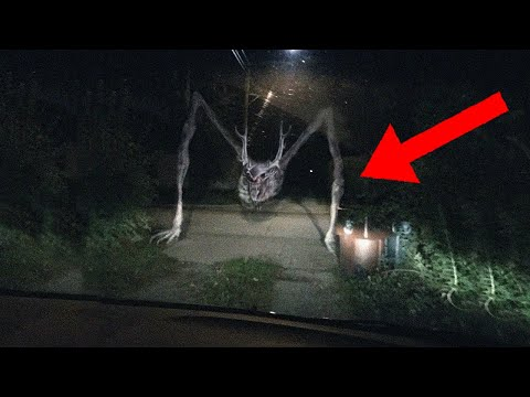 CREEPIEST Legends From North America!