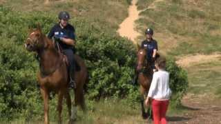 Dessine-moi un été ! Policier à cheval