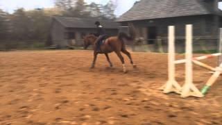 Первый раз прыгала на коне (Соня Поня)