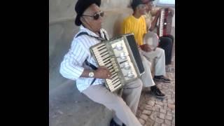 SR CHICO SANFONEIRO BOOOOOOOM