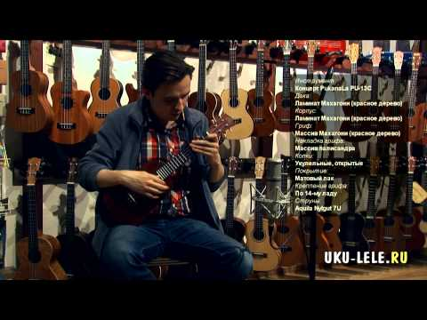 Ukulele PukanaLa PU-13C Concert Review sound test