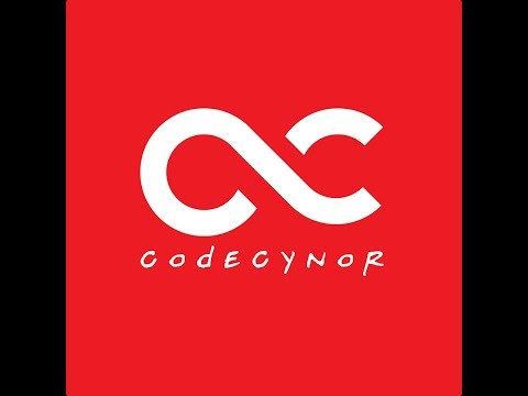 CodeCynor Software House In Multan About Us