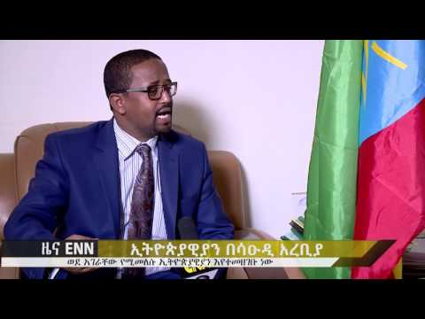 Ethiopia: Ethiopian Ambassador to Saudi Arabia Amin Abdulkadir speaks about returnees - ENN news
