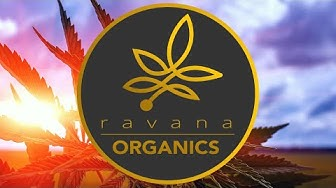 CBD Oil in North Richland Hills TX - RavanaOrganics.com