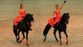Андалузские лошади и всадницы красавицы #ИППОсфера 2018 Spanish Andalusian horses show #Hipposphere