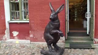 rabbit in russia / Что можно увидеть в Санкт Петербурге