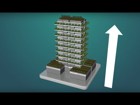 Vertical Farming - Growing In New Directions | California Academy of Sciences