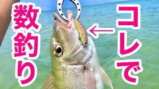 【沖縄釣り】初心者必見!ルアーで数釣りする方法【沖縄ルアー】