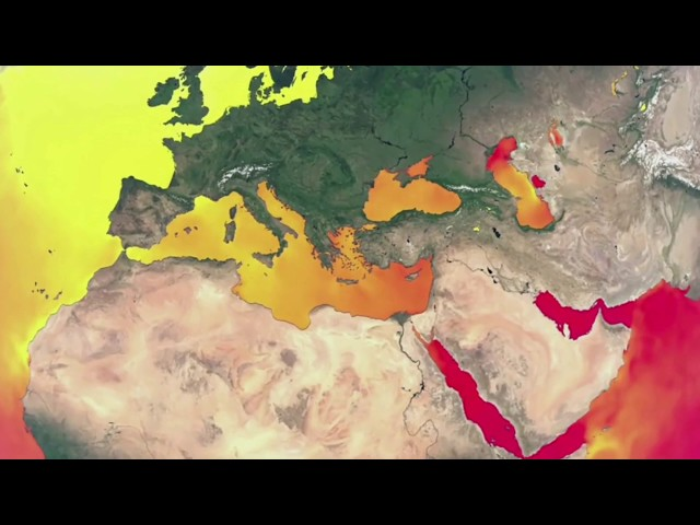Denizlerimiz ve İklim Değişikliği