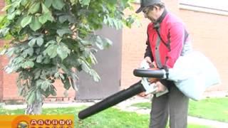 видео Воздуходувки > Воздуходувки одноступенчатые