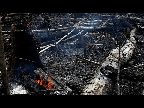 Bolsonaro acusa a las organizaciones ambientales de estar detrás de los incendios