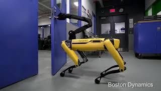 Dynamic Robot