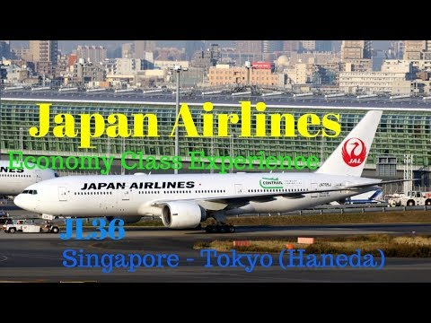 Japan Airlines Economy Class Experience: JL36 Singapore to Tokyo (Haneda)