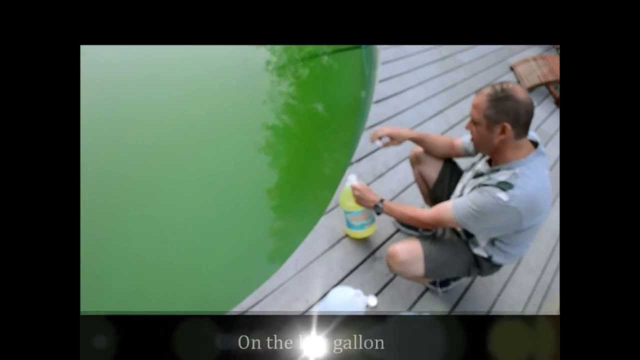 Youtube Pool Reinigen Mit Vitamin C How To Clean A Green Pool