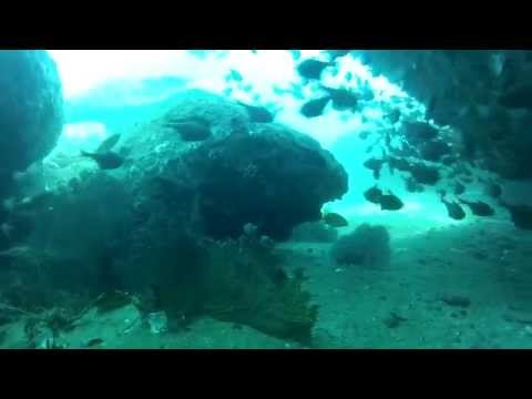 Scuba Diving in Chennai