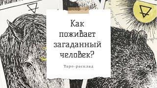 Как поживает загаданный человек? | Таро-расклад