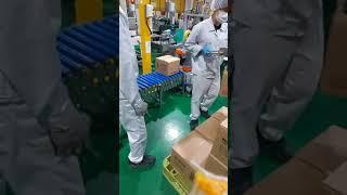 서울우유 포장 출하 노브랜드 박스 진공흡착이송 장치 (…