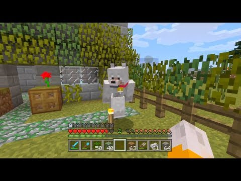 Minecraft Xbox - The Big Dog [97]