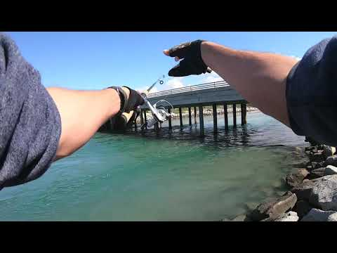 Jetty Fishing Surf Perch And Calico Bass, Carlsbad CA