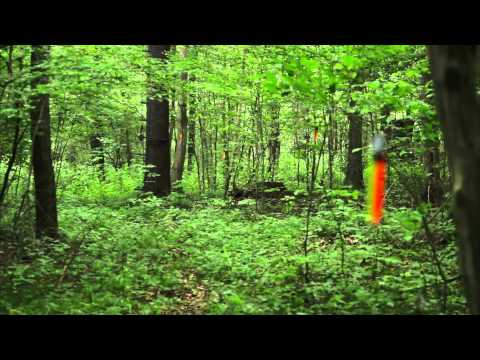 Hunter Safety System Night N Day Trail Markers