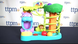 Bright Starts Having a Ball Jungle Fun Ball Climber from Kids II
