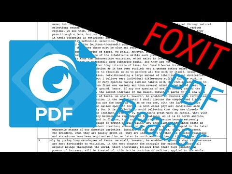 Foxit Pdf Review