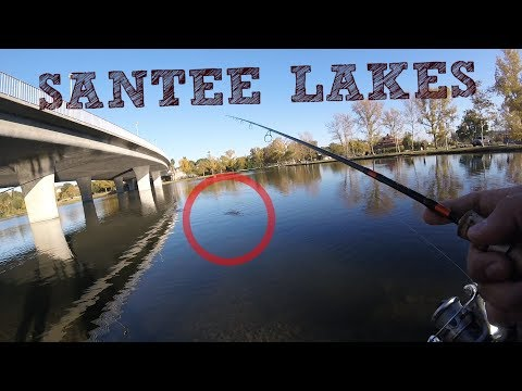 Santee Lakes Trout Fishing With Rodney Marquez