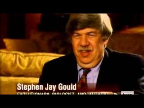 A Glorious Accident (6 of 7) Stephen Jay Gould: The Unanswerable