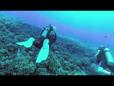 Scuba Diving Molokini Crater Maui Hawaii
