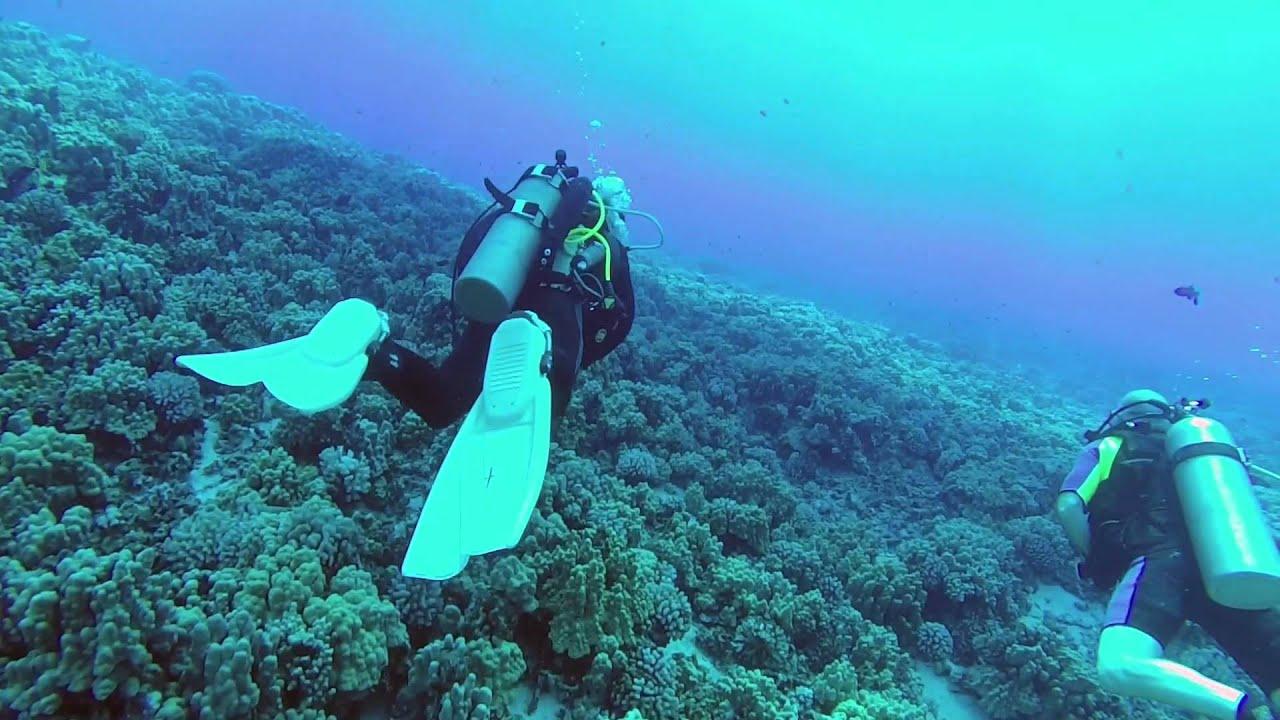Scuba Diving Molokini Crater Maui Hawaii